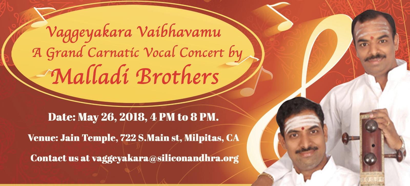 Malladi_Concert_slider.5b03936b02e2f6.45213798